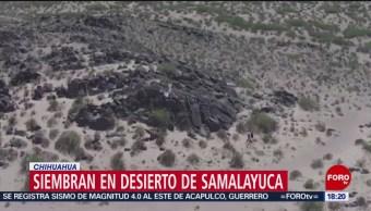 FOTO: Habitantes de Samalayuca, Chihuahua, vencen las altas temperaturas, 20 Julio 2019