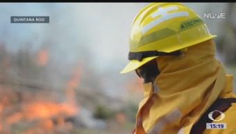 Incendio forestal ha destruido más de 2 mil hectáreas en la reserva de Sian Ka'an