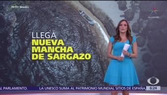 Llega nueva mancha de sargazo a Quintana Roo