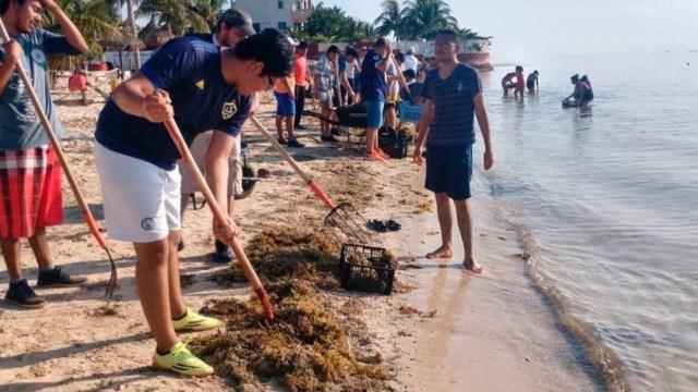 Foto: Una mancha de sargazo toca tierra en las playas al sur de Quintana Roo; otra llegó a Tulum y una tercera a la Riviera Maya, julio 7 de 2019 (Twitter: @QRooUnidos)