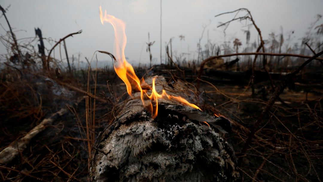 Amazonas arde y Brasil rechaza ayuda del G7 para combatir incendios