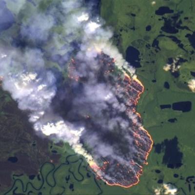 Amazonía lleva 16 días incendiándose y nadie hace nada, alertan usuarios de Twitter