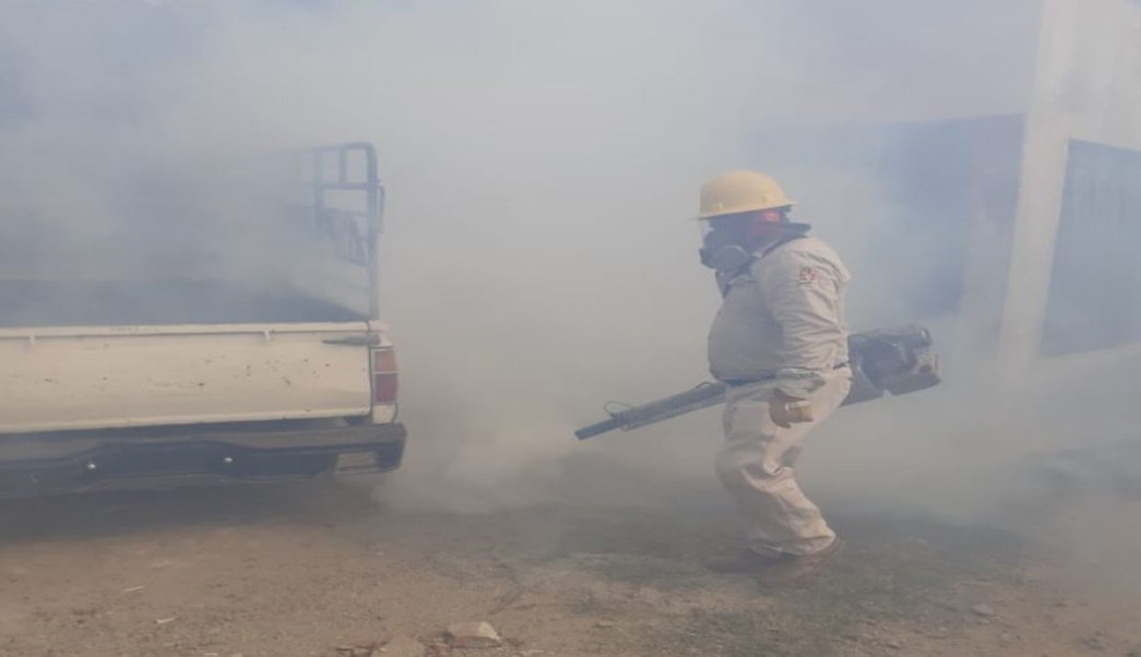 Foto Aumentan los casos de dengue en Oaxaca 14 agosto 2019