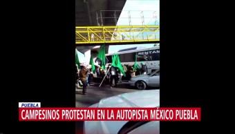 Campesinos mantienen bloqueos en la México-Puebla