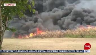 Foto: Combaten Incendio Zona Pantanos Tabasco 27 Agosto 2019