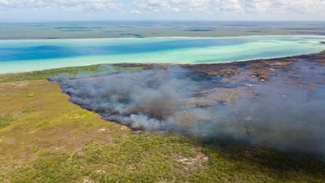 : El reporte preliminar señala que el incendio fue provocado por cazadores furtivos, 2 de agosto de 2019, (Conafor)