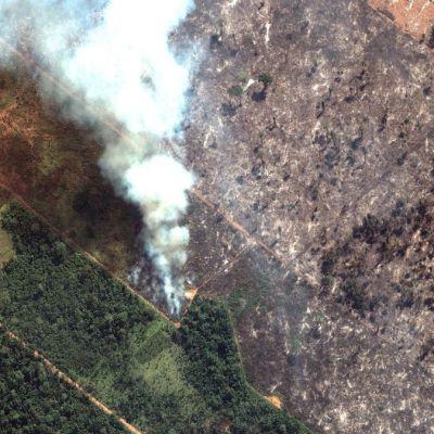 Macron asegura que incendios en Amazonas son una 'crisis internacional'