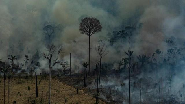 Foto: El titular de Medio Ambiente, Ricardo Salles, completó que las operaciones en la Amazonía brasileña también podrán contar con cerca de 250 millones de dólares, 24 de agosto de 2019 (EFE)