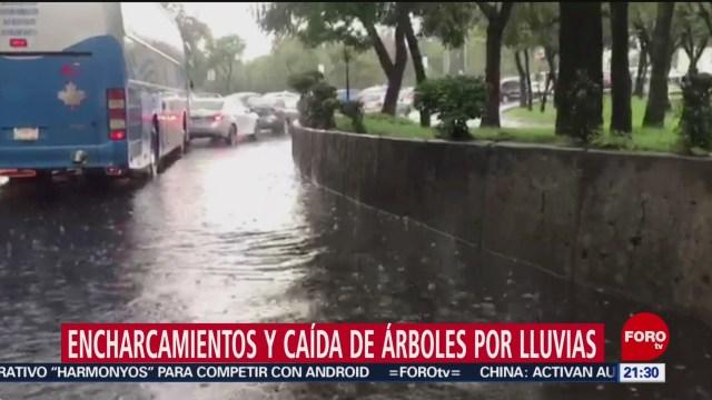 Foto: Granizo Encharcamientos Cdmx 9 Agosto 2019