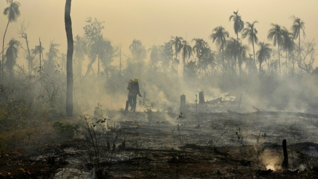 Foto: A lo largo de Brasil se habían registrado casi 80.000 focos de fuego al 24 de agosto, el 25 de agosto de 2019 (AP)