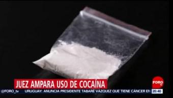Foto: Juez Otorga Amparos Uso Cocaína 20 Agosto 2019