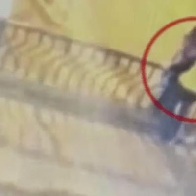 Video: Pareja de novios muere tras caerse de un puente