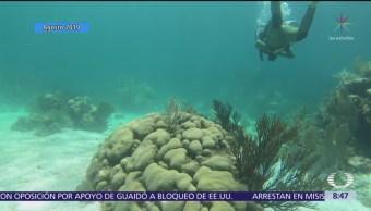 Paola Rojas entrevista al gobernador Carlos Joaquín González por coral blanco