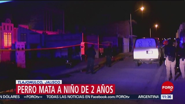 Perro mata a niño de dos años en Tlajomulco, Jalisco