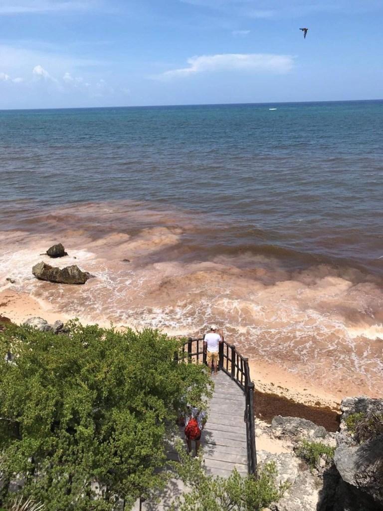 Foto Sargazo en Tulum, Quintana Roo 1 agosto 2019