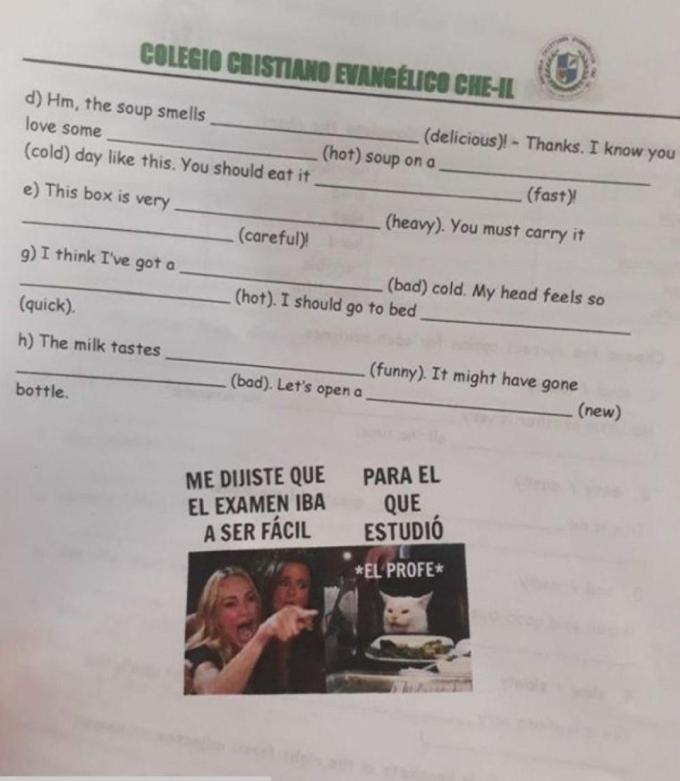 Foto:maestra-meme-gato-examen-argentina. 3 septiembre 2019