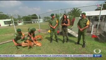 Al Aire, con Paola Rojas: Programa completo del 20 de septiembre del 2019