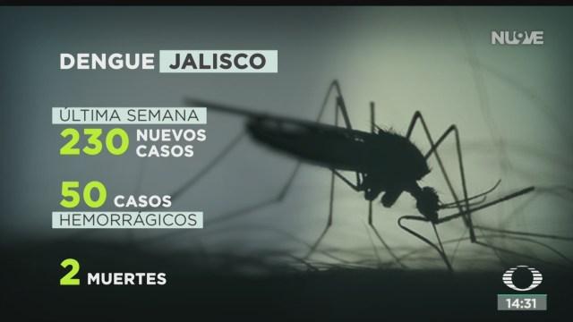 FOTO: Alertan Por Venta Vacunas Falsas Contra Dengue Sarampión