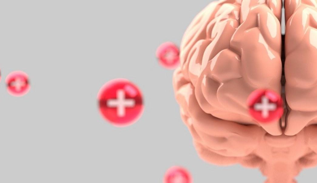 Foto:parásito come cerebro.1 agosto 2019