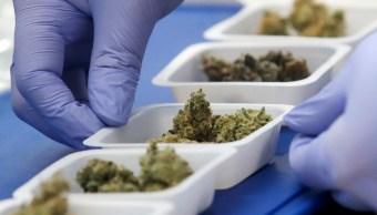 Consumo de marihuana.