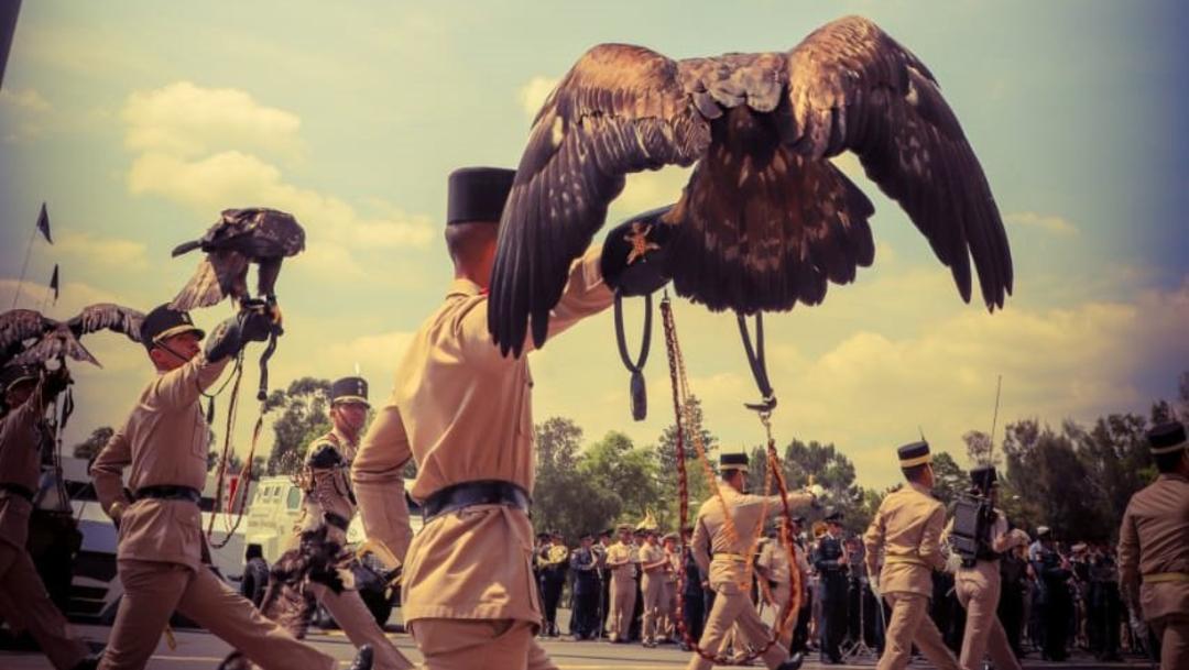 Foto: El 16 de septiembre participarán 3 mil elementos de la Guardia Nacional, 5 de septiembre de 2019 (Twitter @SedenaMx)
