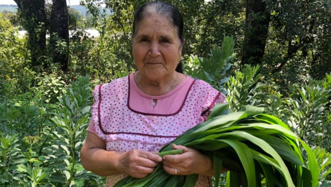 Foto:Doña angela señora mexicana canal de cocina youtube. 24 Septiembre 2019