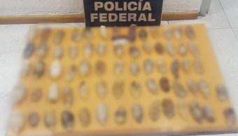 Foto: La Policía Federal halló 67 paquetes con cocaína en el drenaje del AICM. Twitter/@PoliciaFedMx