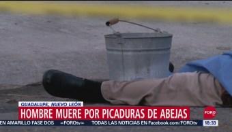 FOTO: Hombre Muere Tras Ataque Abejas Nuevo León
