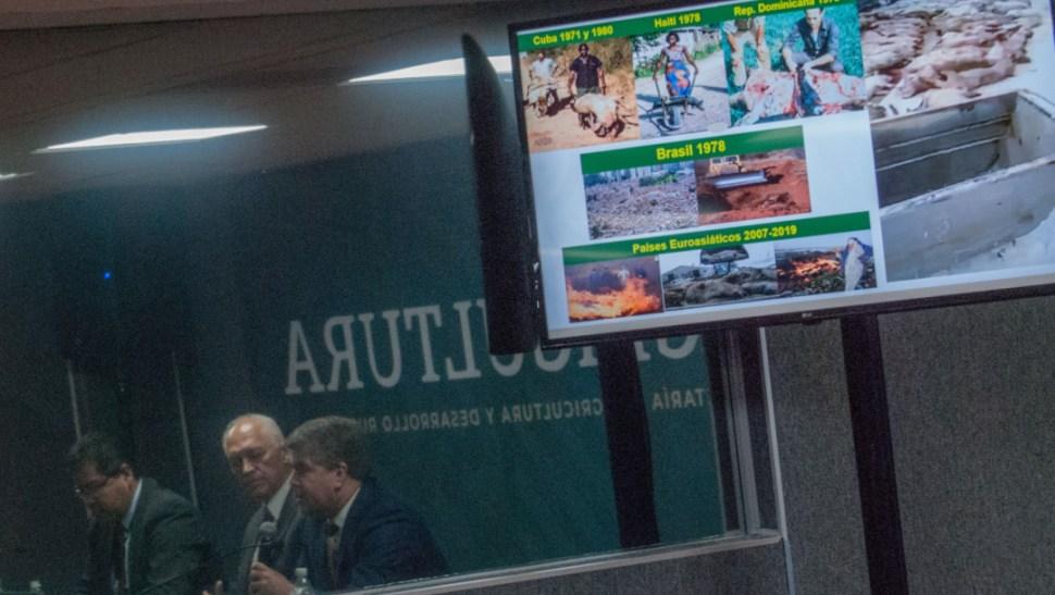 FOTO México se prepara para ataque biológico de peste porcina (Sader/Cuartoscuro)