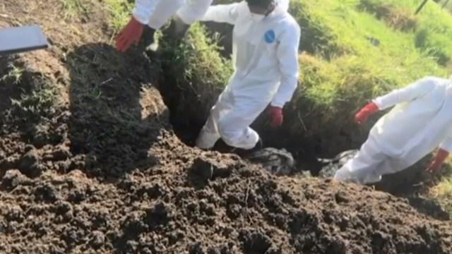 FOTO Michoacán esconde homicidios y no atiende desapariciones, denuncian activistas (Noticieros Televisa)