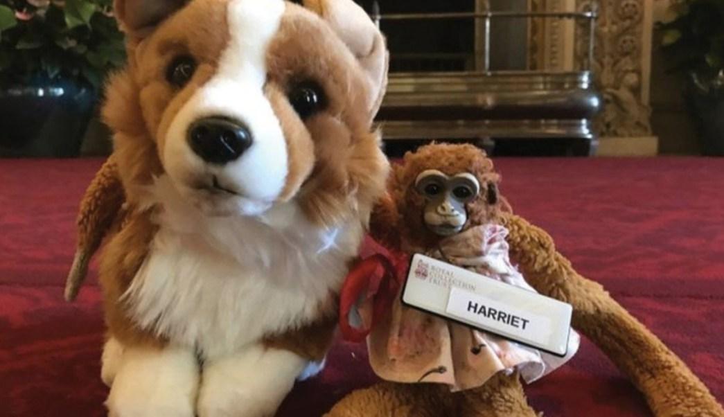 Harriet regresó a Australia con un compañero de viaje