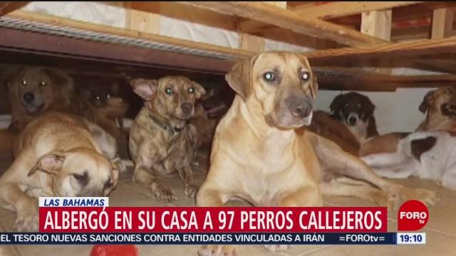 Foto: Mujer Alberga Perros Casa Paso Dorian 4 Septiembre 2019
