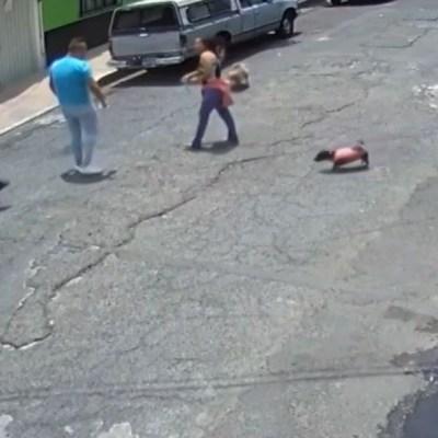 Video: Hombre taclea a mujer tras pelea por unos perros en CDMX