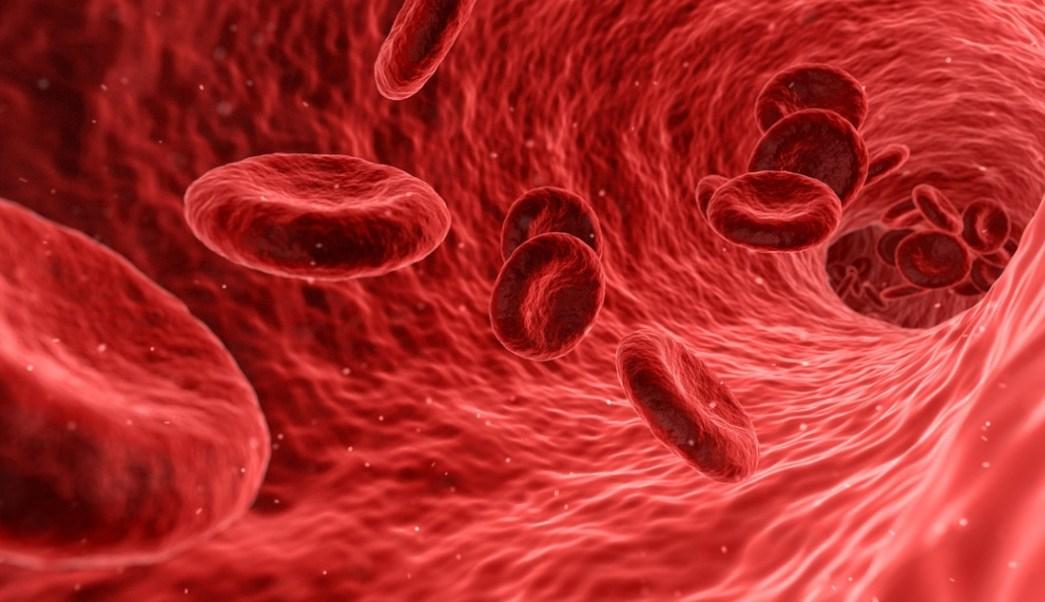 Foto:mutacion-genética-resistente-vih-organismo-humano. 2 septiembre 2019