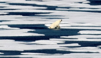 Foto NASA alerta sobre calentamiento y derretimiento del Ártico 10 septiembre 2019