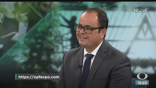 FOTO: OPF Expo 2019, Evento De Flores Más Importante Del Paíso Opf