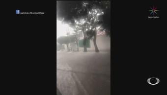 FOTO: Tormenta afecta varias colonias de Veracruz, 13 SEPTIEMBRE 2019