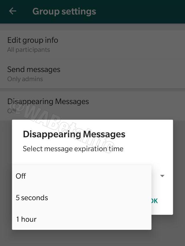 Foto:tiempo disponible mensajes que desaparecen nueva funcion whatsapp. 2 Octubre 2019