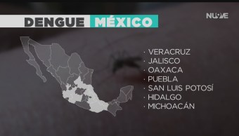 FOTO: Aumentan Casos Dengue País,