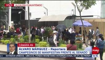 FOTO: Campesinos se manifiestan frente Senado República