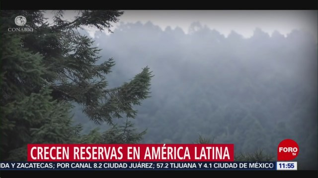 Foto: Reservas Naturales Crecen América Latina 26 Octubre 2019