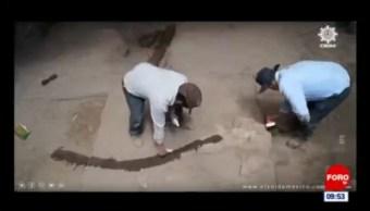 Extra, Extra: ¡Encuentran huesos de mastodonte!