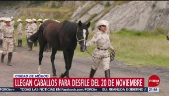 Foto: Caballos Desfile 20 Noviembre Revolución 16 Octubre 2019