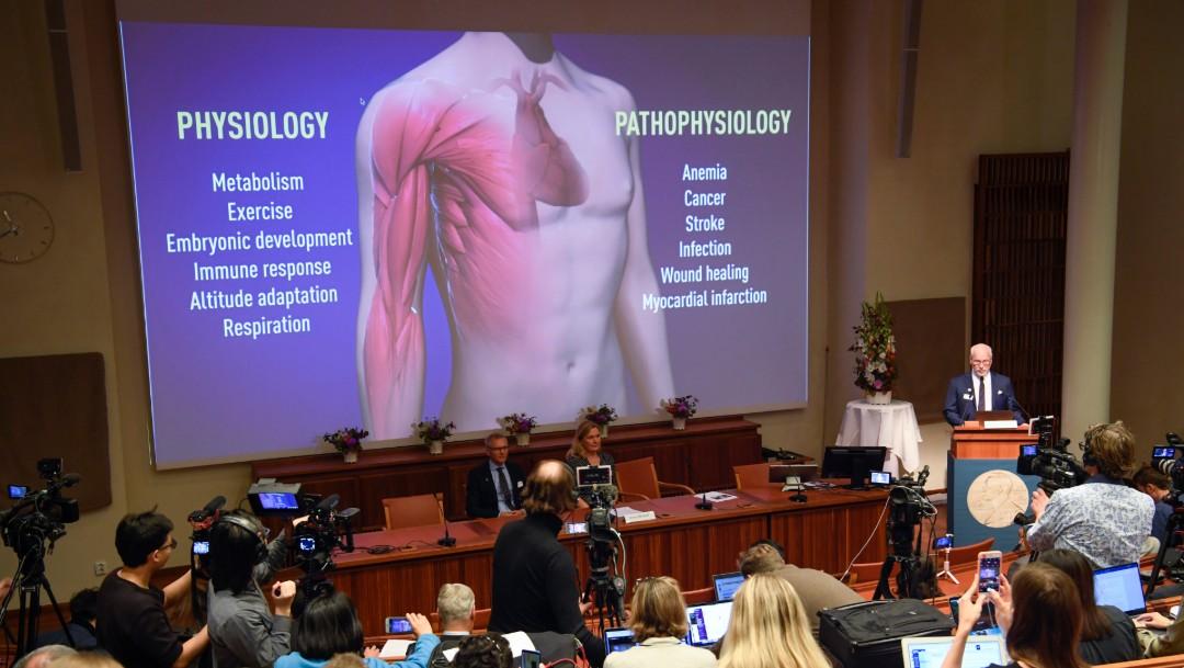 Foto: Anuncia a ganadores del Nobel de Medicina, 7 de septiembre de 2019, Suecia