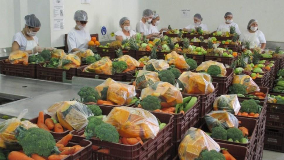 Foto ONU pide invertir dietas saludables ante hambre y obesidad