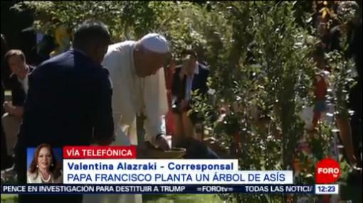 FOTO: Papa Francisco planta un árbol de Asís, 5 octubre 2019