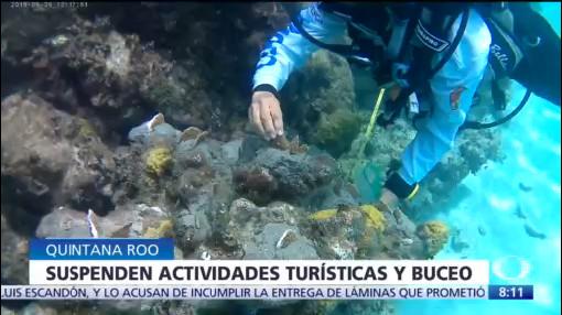 Prohíben visitas a arrecifes de Cozumel para evitar deterioro
