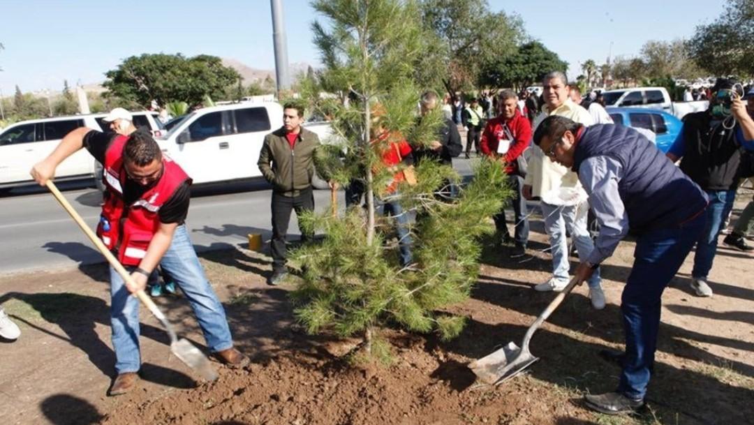 Inician campaña de reforestación de Ciudad Juárez