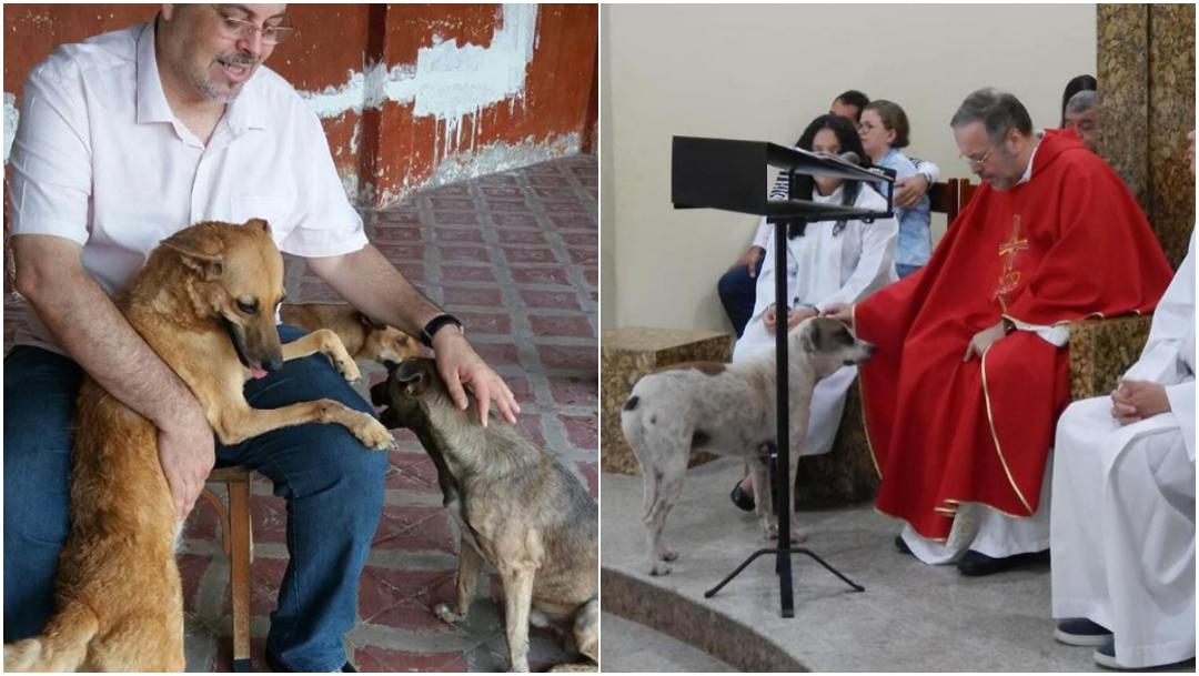 Foto: Sacerdote invita perros a misa para que sean rescatados. 24 Octubre 2019