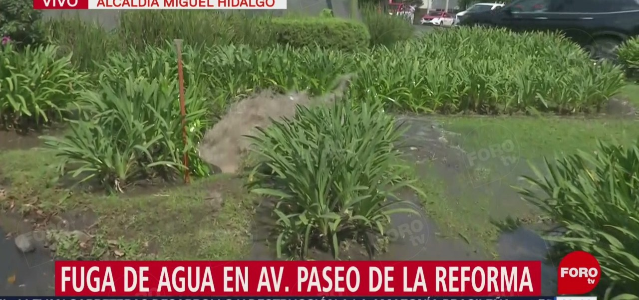 Se registra fuga de agua tratada en Paseo de la Reforma, en CDMX